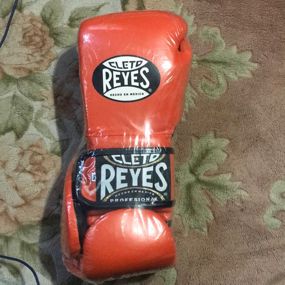 Cleo Reyes Boxing Gloves NWT